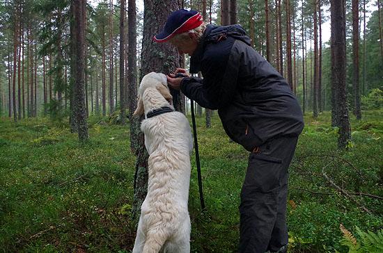 grundkurs_skog_04